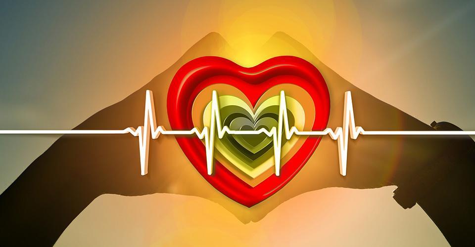 Elektrokardiogram över hjärta och händer.