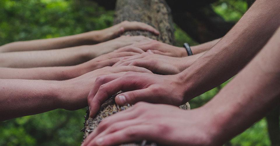Kädet puunrungolla.