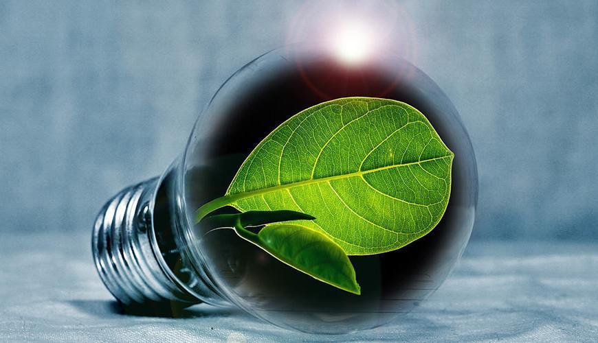 Innovaatiopedagogiikalla kohti kestävää tulevaisuutta?