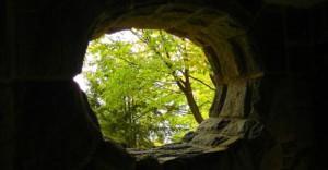 Metsäinen näkymä luolan suuaukolta ulospäin.